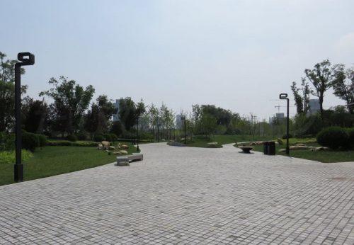 広場内の散策路